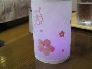 カンザシ&桜の花